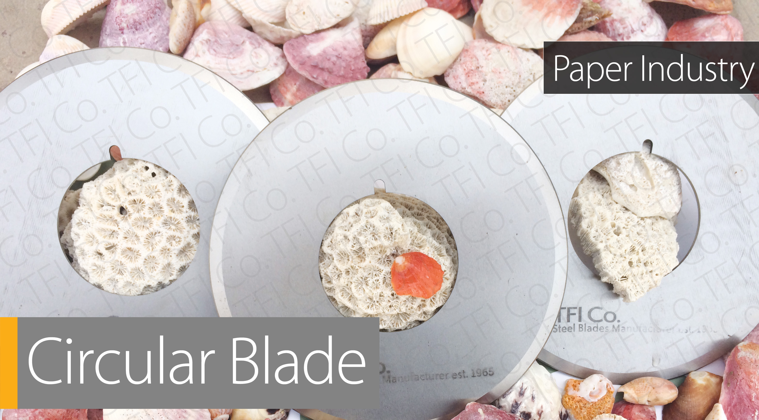 BT_Slider_simple10, tape circular blades steel made, by tighe haye fooladi iran,  Progressive Die TFI Co, Steel Blades manufacturer Bending tools and Press Braking Punch and die shear Blades and Machine knives in UAE and Saudi Arabia , Belarus and Georgia